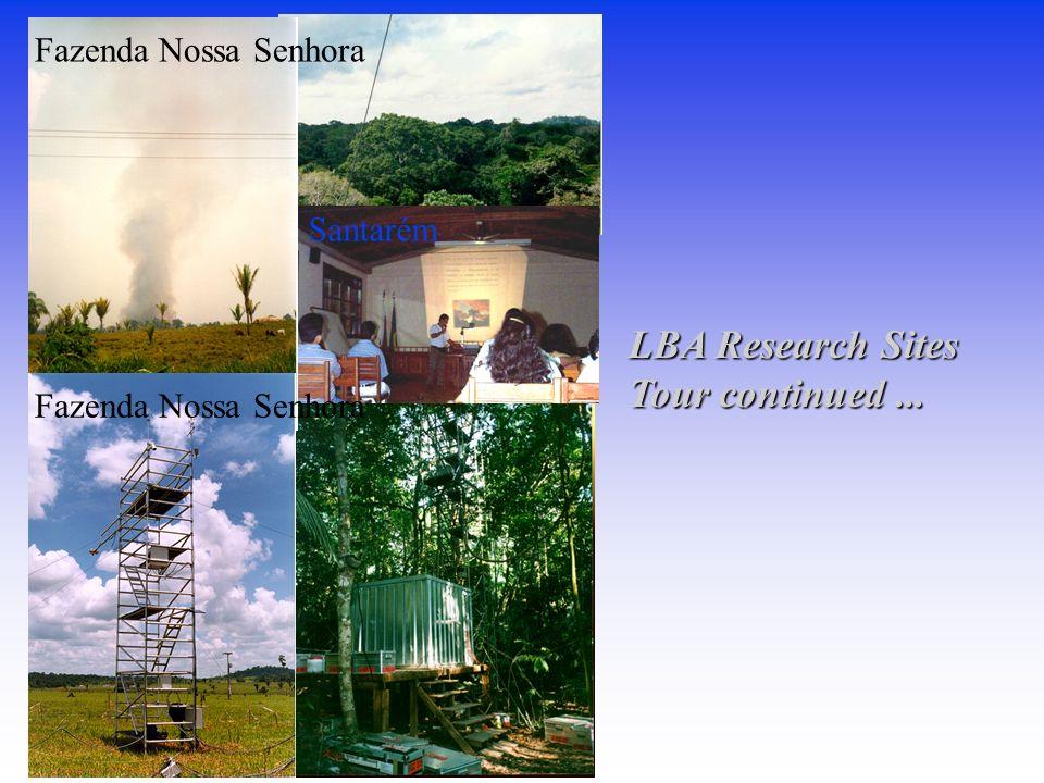 Fazenda Nossa Senhora Santarém LBA Research Sites Tour continued ...
