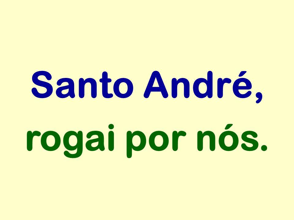 Santo André, rogai por nós.