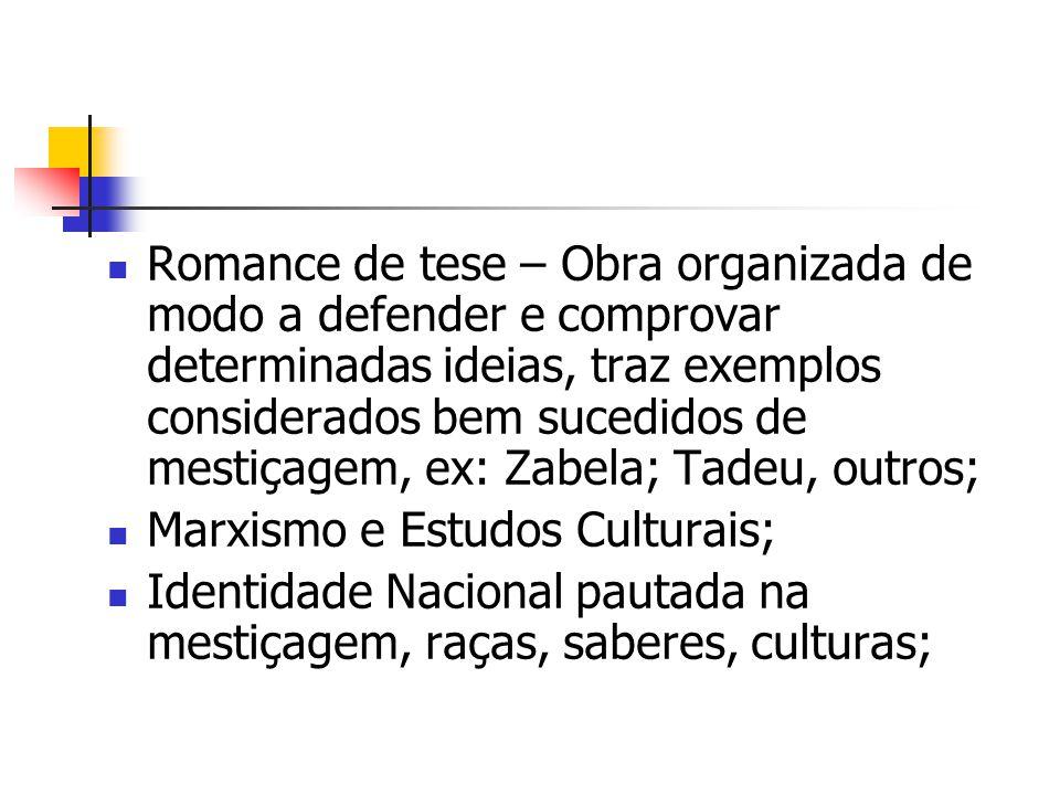 Romance de tese – Obra organizada de modo a defender e comprovar determinadas ideias, traz exemplos considerados bem sucedidos de mestiçagem, ex: Zabela; Tadeu, outros;