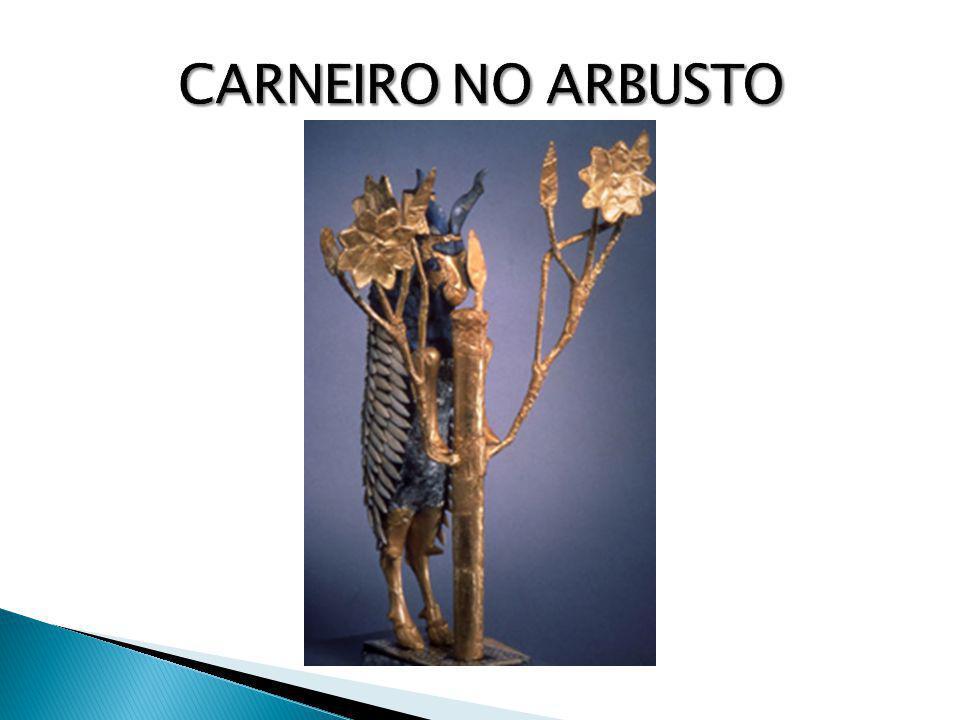 CARNEIRO NO ARBUSTO