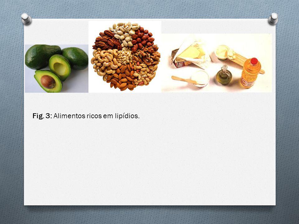 Fig. 3: Alimentos ricos em lipídios.