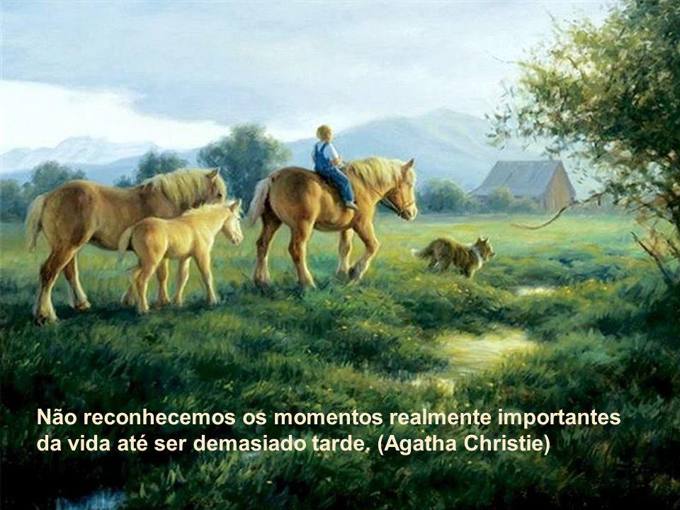Não reconhecemos os momentos realmente importantes da vida até ser demasiado tarde. (Agatha Christie)