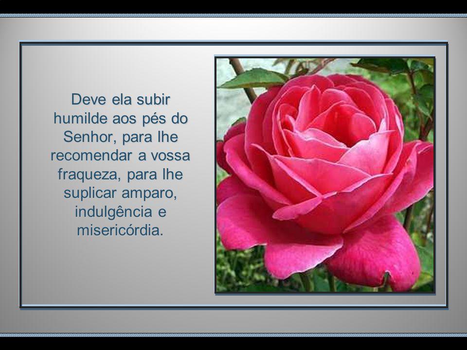 Deve ela subir humilde aos pés do Senhor, para lhe recomendar a vossa fraqueza, para lhe suplicar amparo, indulgência e misericórdia.