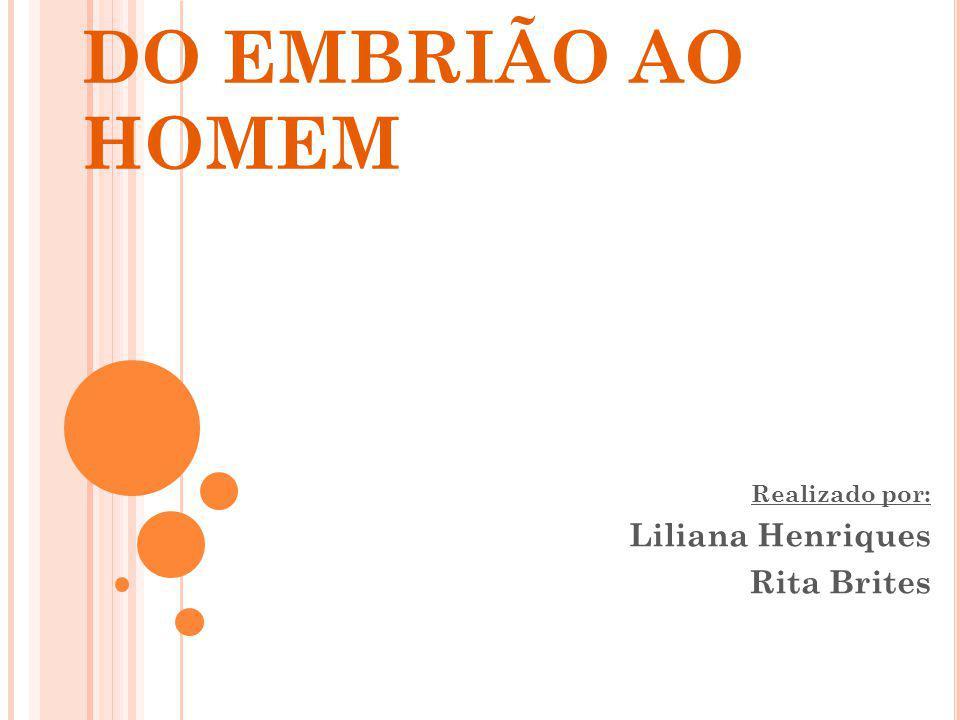 Realizado por: Liliana Henriques Rita Brites