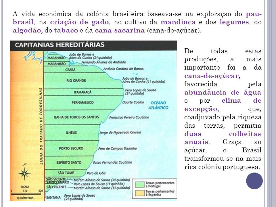 A vida económica da colónia brasileira baseava-se na exploração do pau-brasil, na criação de gado, no cultivo da mandioca e dos legumes, do algodão, do tabaco e da cana-sacarina (cana-de-açúcar).
