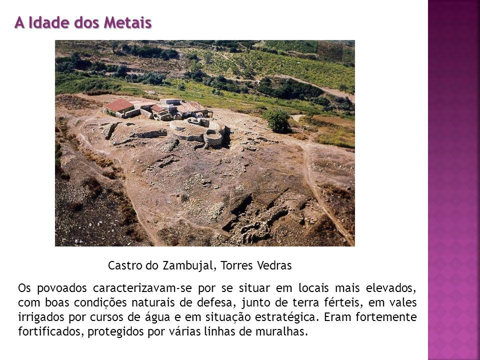 Castro do Zambujal, Torres Vedras