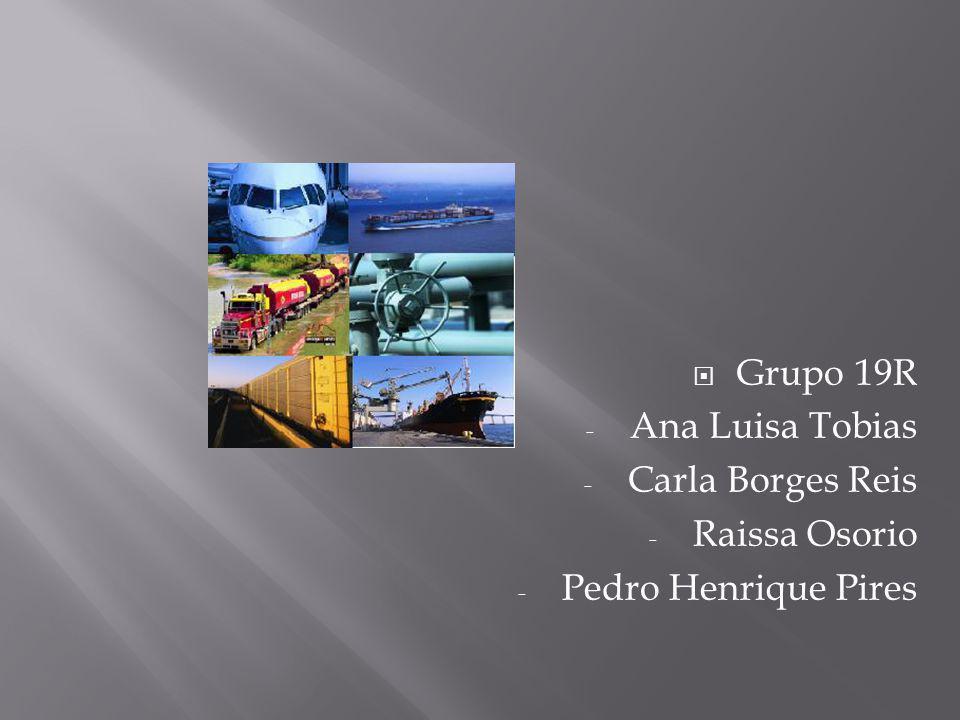 Grupo 19R Ana Luisa Tobias Carla Borges Reis Raissa Osorio Pedro Henrique Pires