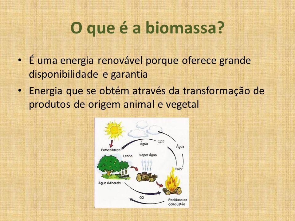 O que é a biomassa É uma energia renovável porque oferece grande disponibilidade e garantia.