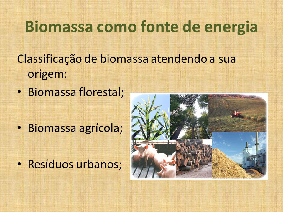 Biomassa como fonte de energia