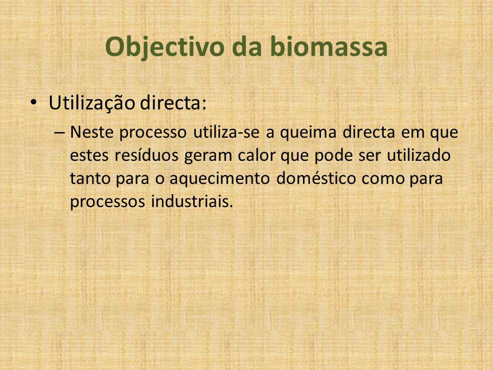 Objectivo da biomassa Utilização directa: