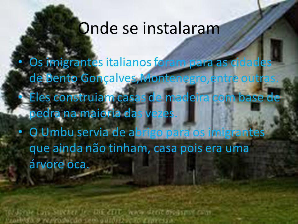Onde se instalaram Os imigrantes italianos foram para as cidades de Bento Gonçalves,Montenegro,entre outras.