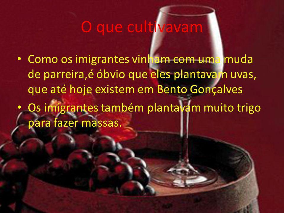 O que cultivavam Como os imigrantes vinham com uma muda de parreira,é óbvio que eles plantavam uvas, que até hoje existem em Bento Gonçalves.