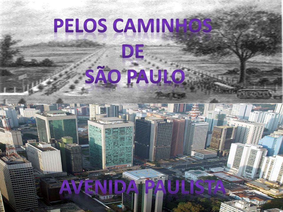 Pelos caminhos de são paulo Avenida paulista