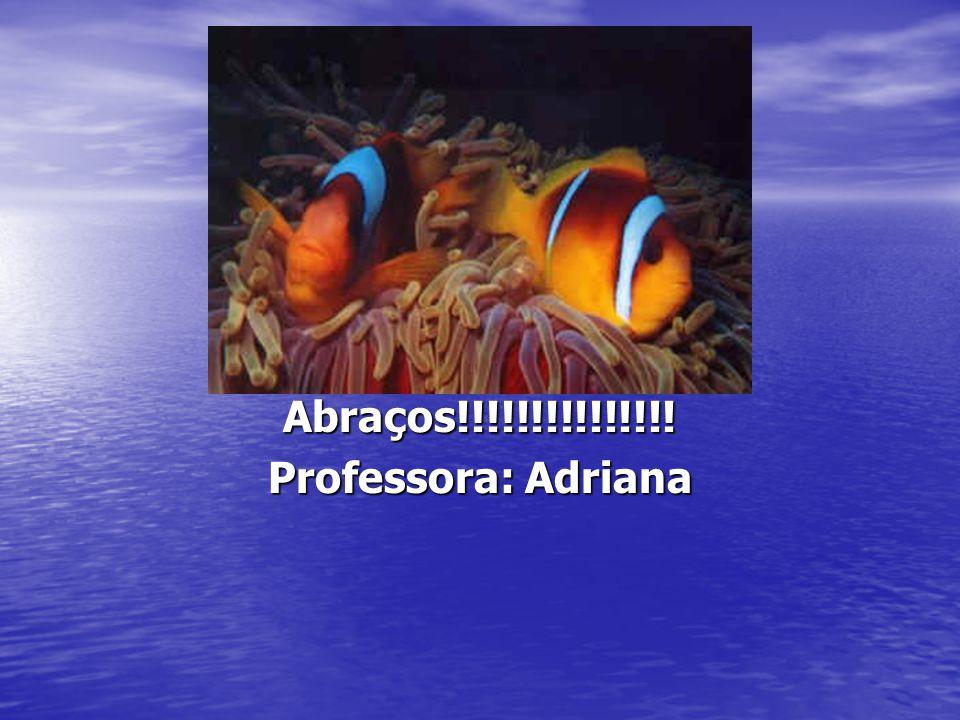 Abraços!!!!!!!!!!!!!!! Professora: Adriana
