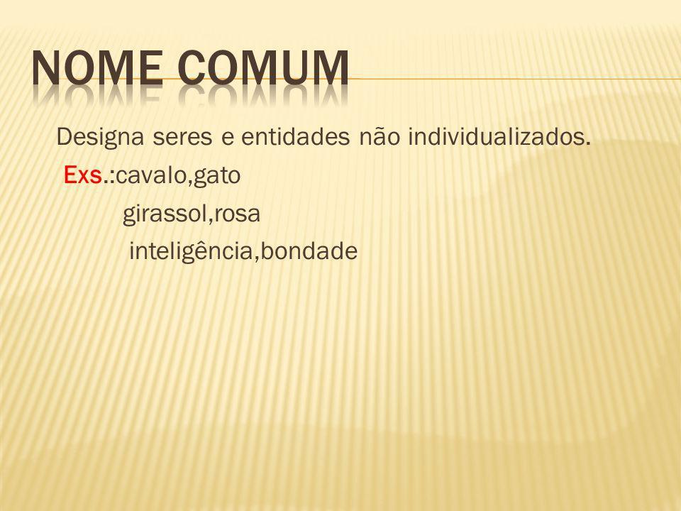 Nome comum Designa seres e entidades não individualizados.