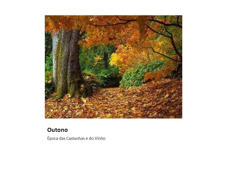 Outono Época das Castanhas e do Vinho