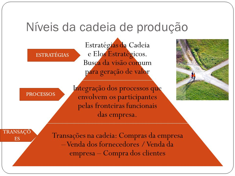 Níveis da cadeia de produção