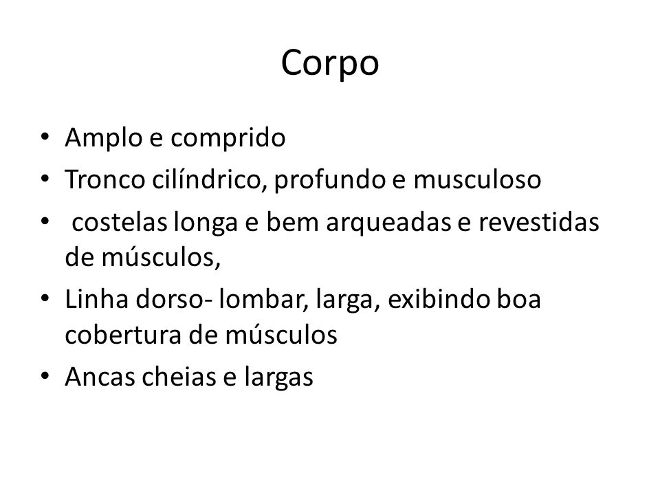 Corpo Amplo e comprido Tronco cilíndrico, profundo e musculoso