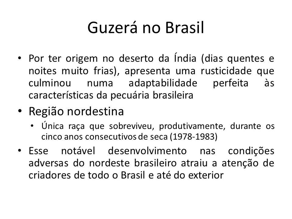 Guzerá no Brasil Região nordestina