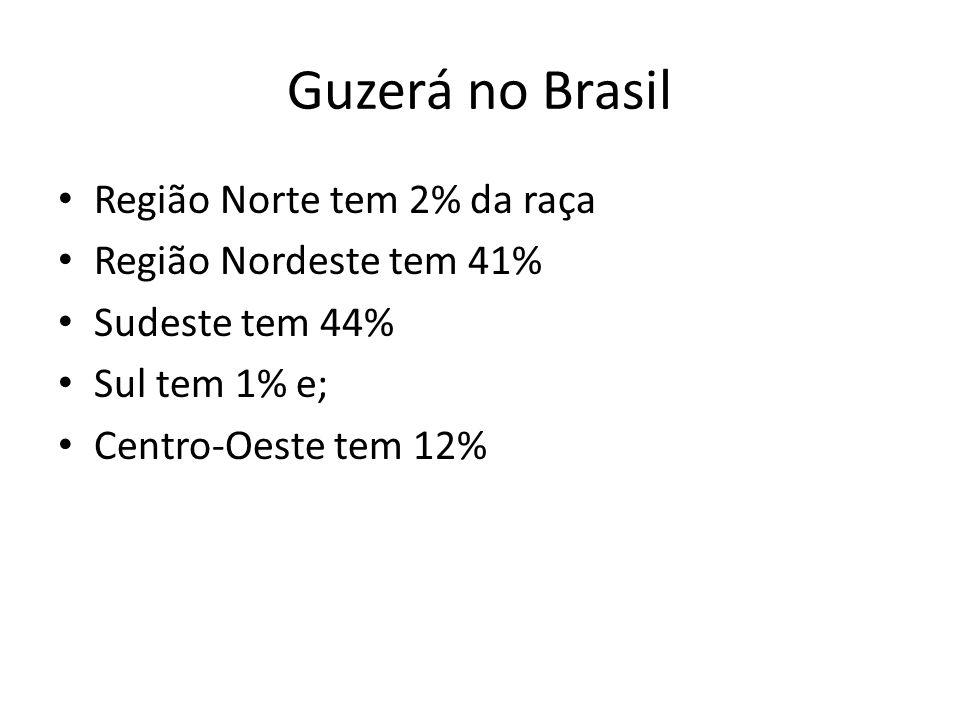 Guzerá no Brasil Região Norte tem 2% da raça Região Nordeste tem 41%