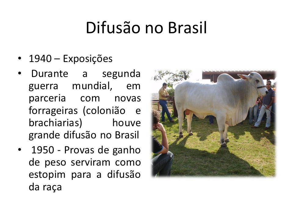 Difusão no Brasil 1940 – Exposições