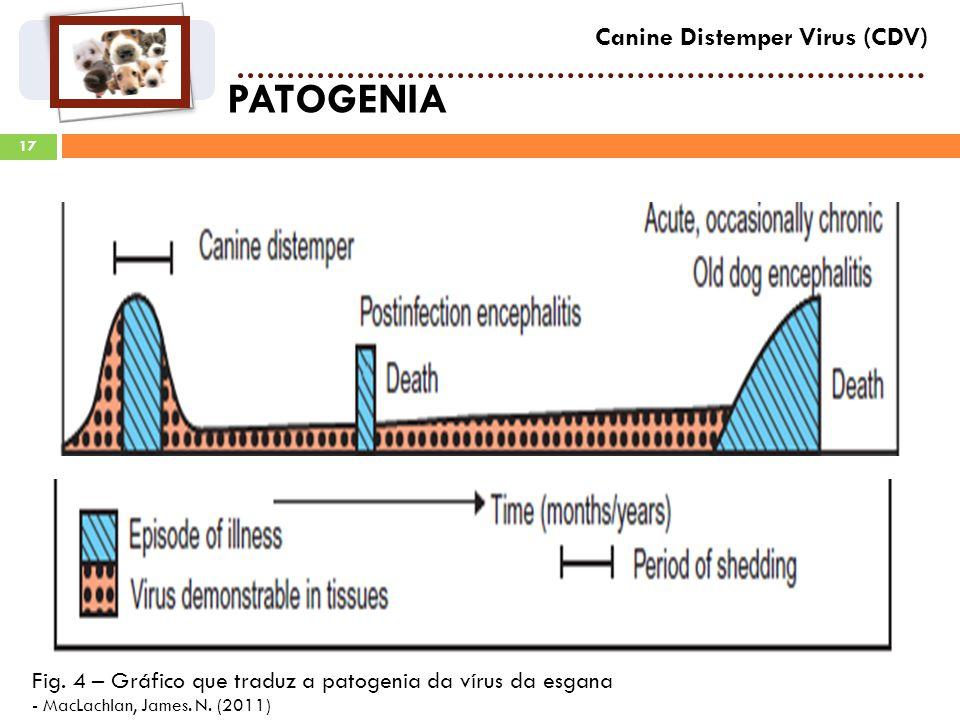 PATOGENIA Canine Distemper Virus (CDV)