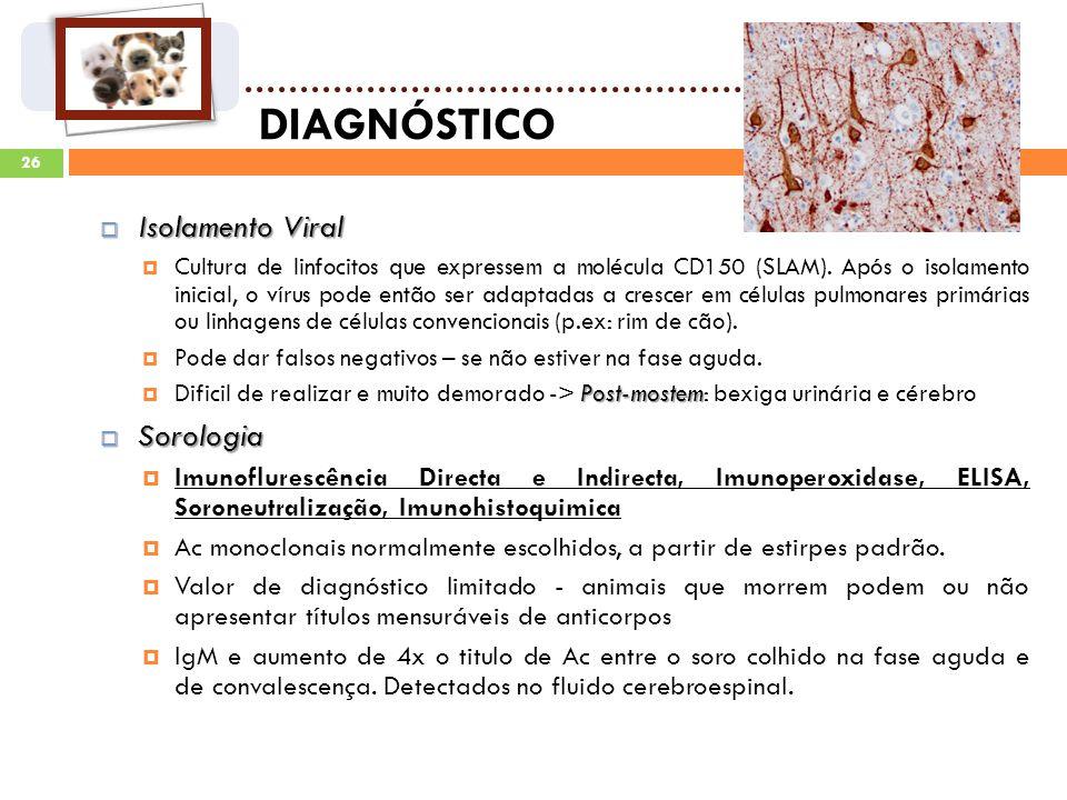 DIAGNÓSTICO Isolamento Viral Sorologia