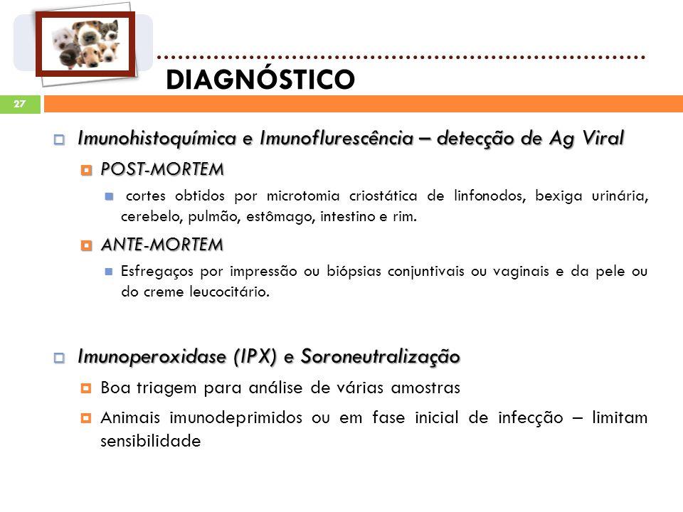 DIAGNÓSTICO Imunohistoquímica e Imunoflurescência – detecção de Ag Viral. POST-MORTEM.