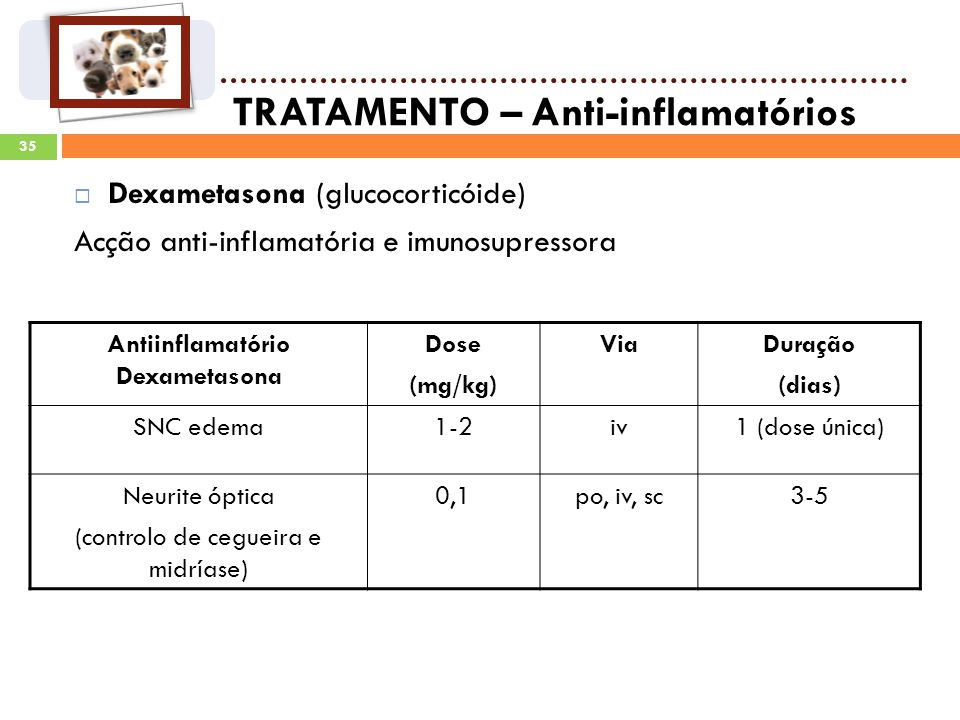 Antiinflamatório Dexametasona
