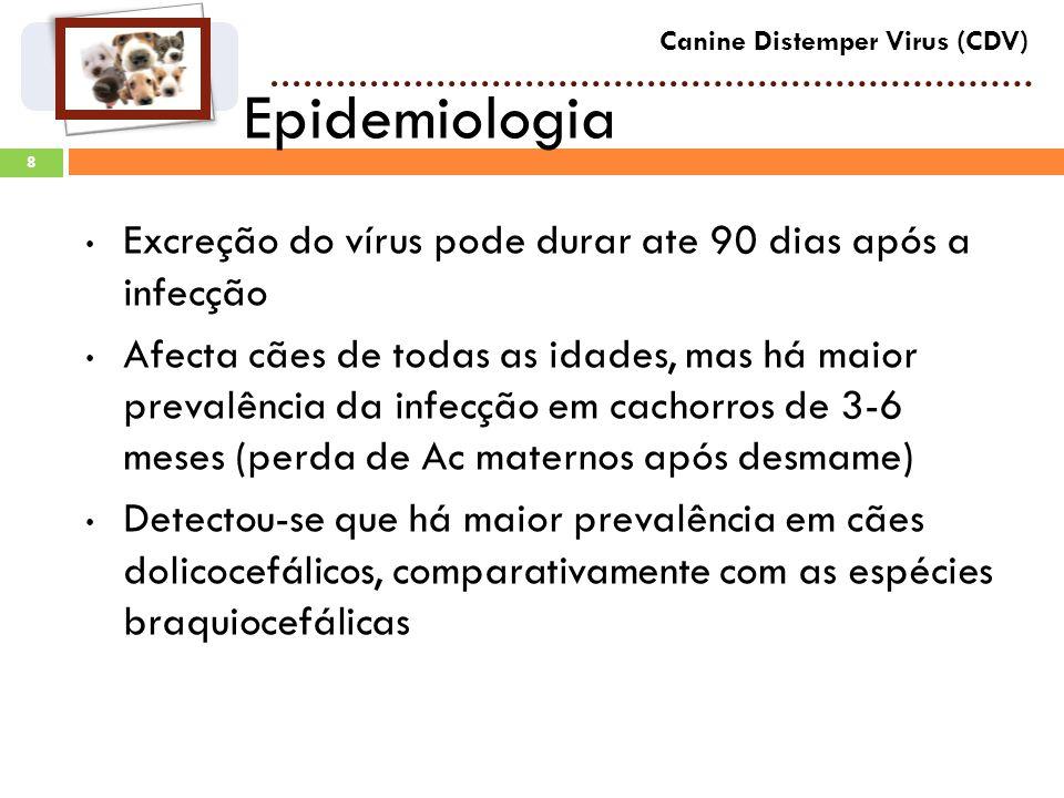 Epidemiologia Excreção do vírus pode durar ate 90 dias após a infecção