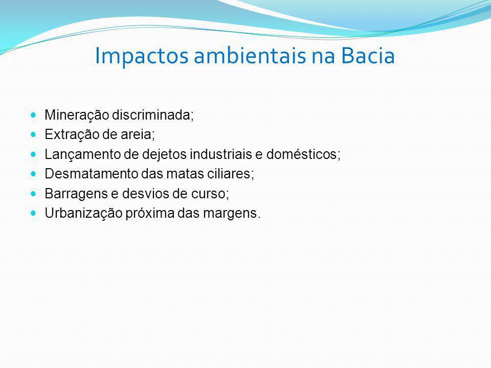 Impactos ambientais na Bacia