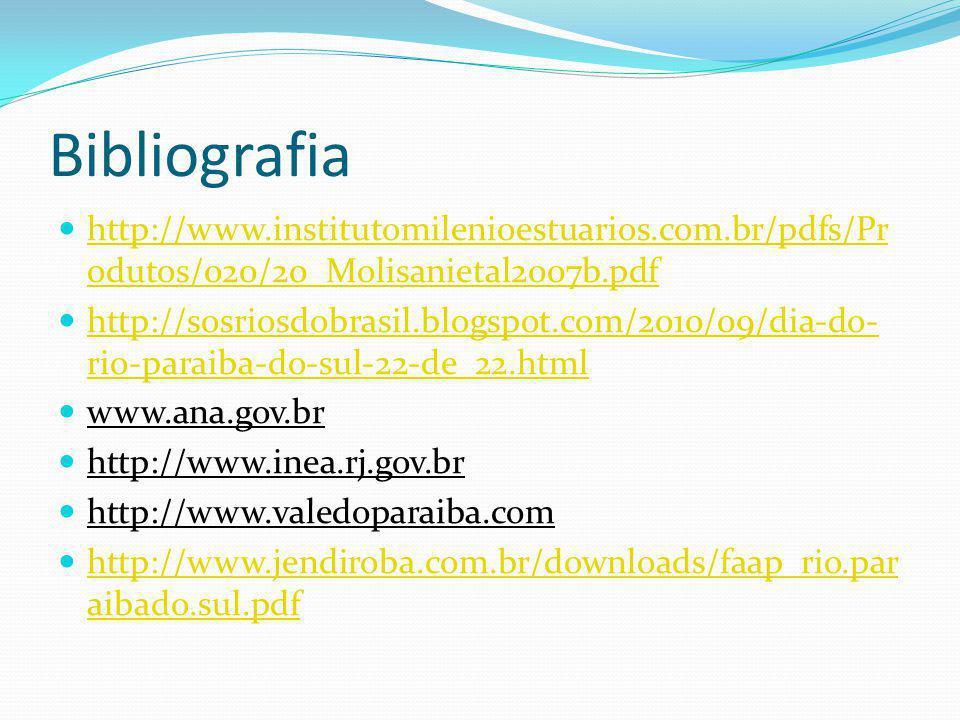 Bibliografia http://www.institutomilenioestuarios.com.br/pdfs/Produtos/020/20_Molisanietal2007b.pdf.