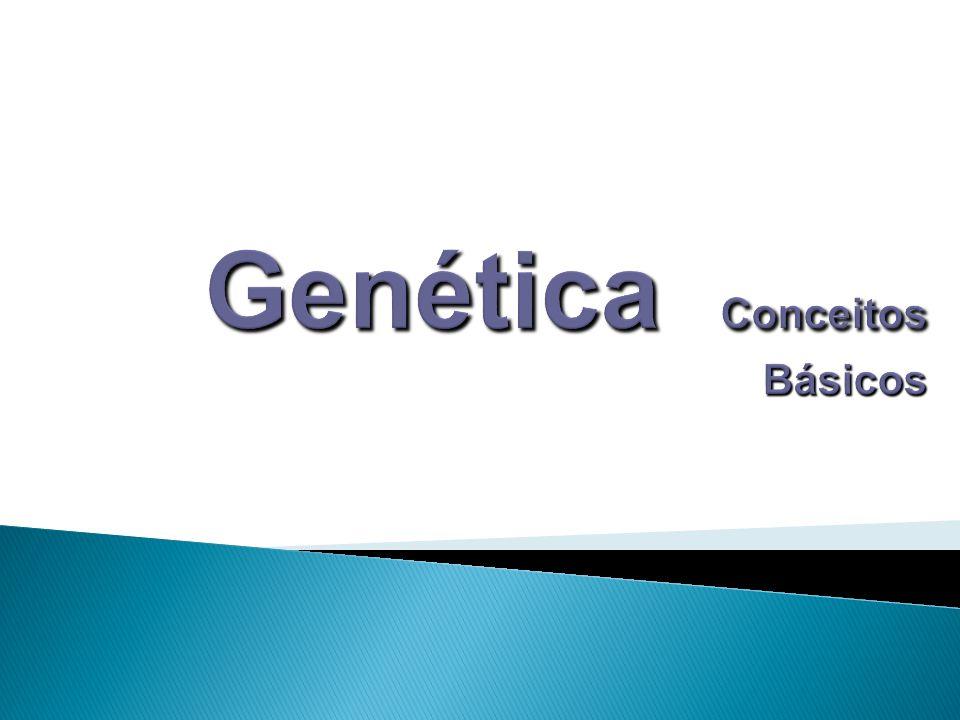 Genética Conceitos Básicos