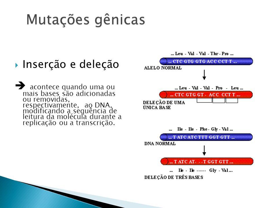 Mutações gênicas Inserção e deleção