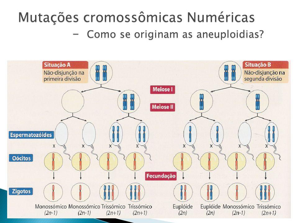 Mutações cromossômicas Numéricas - Como se originam as aneuploidias