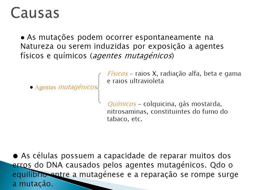 Causas ● As mutações podem ocorrer espontaneamente na Natureza ou serem induzidas por exposição a agentes físicos e químicos (agentes mutagénicos)