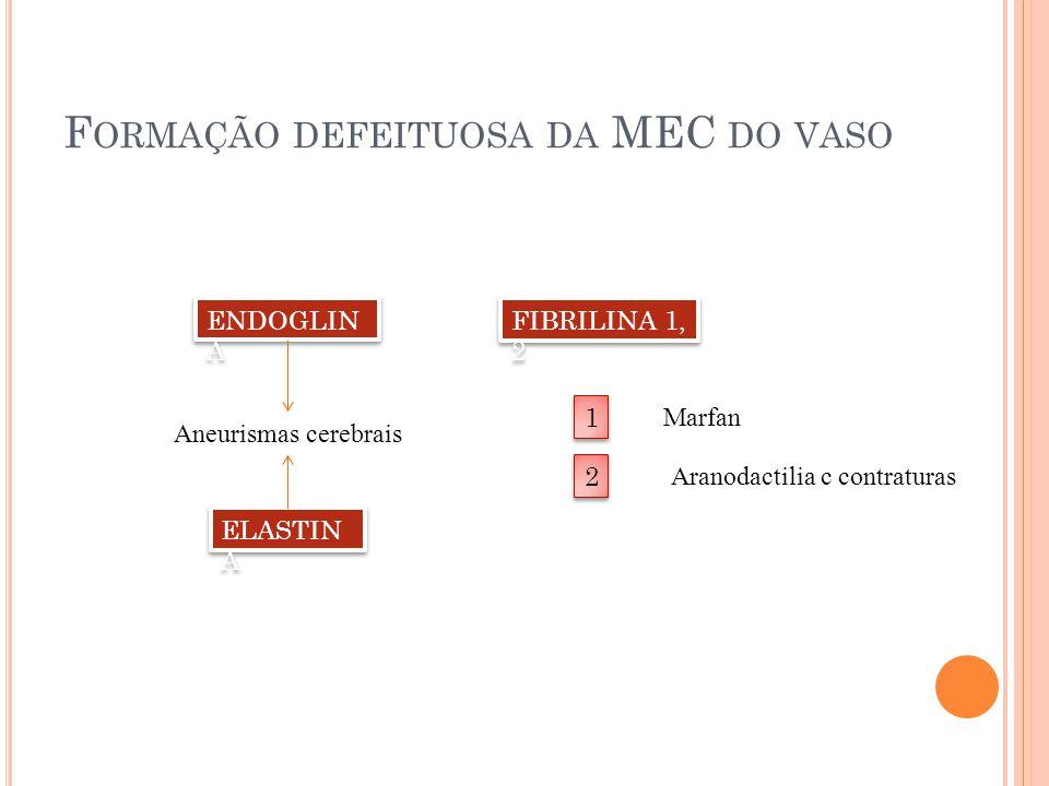 Formação defeituosa da MEC do vaso
