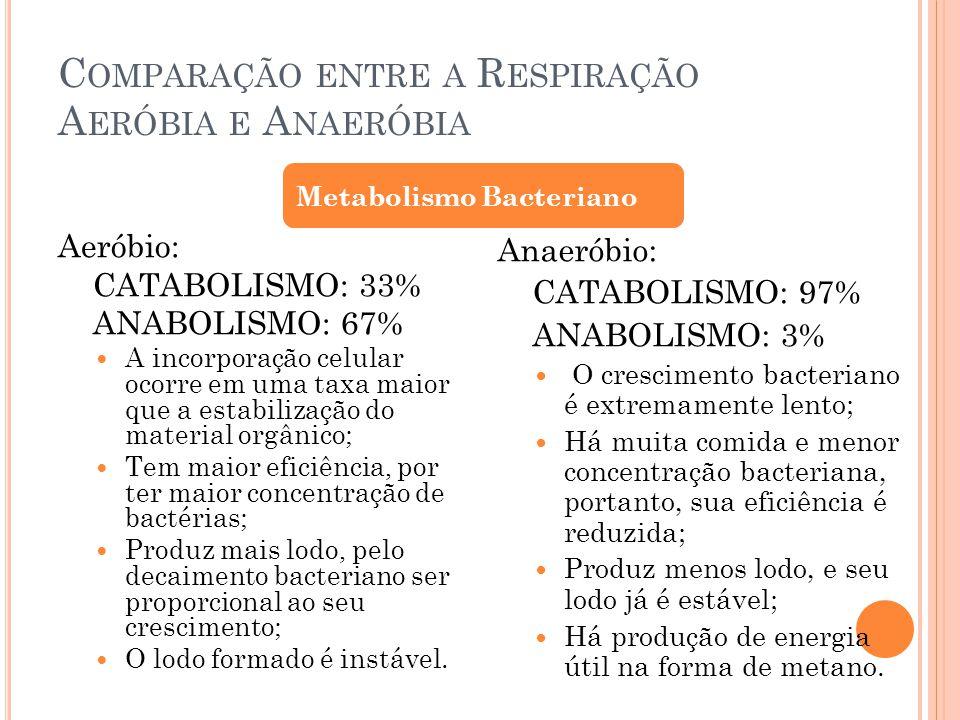 Comparação entre a Respiração Aeróbia e Anaeróbia