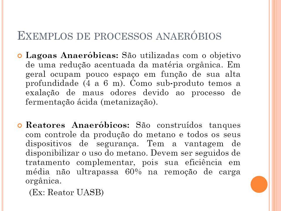 Exemplos de processos anaeróbios