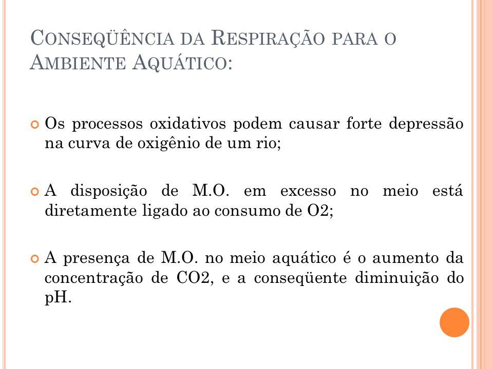 Conseqüência da Respiração para o Ambiente Aquático: