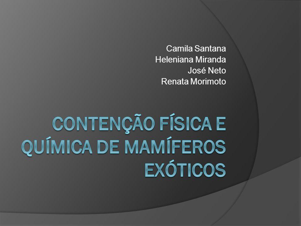 Contenção Física e Química de Mamíferos Exóticos