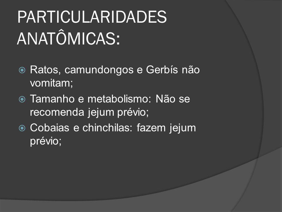 PARTICULARIDADES ANATÔMICAS: