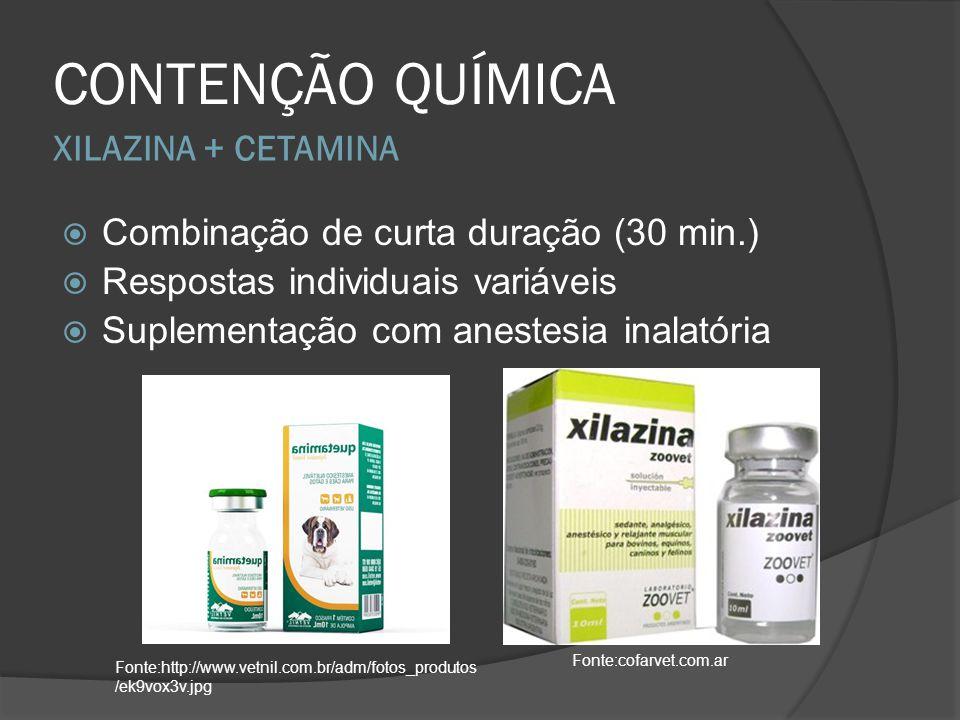 CONTENÇÃO QUÍMICA XILAZINA + CETAMINA