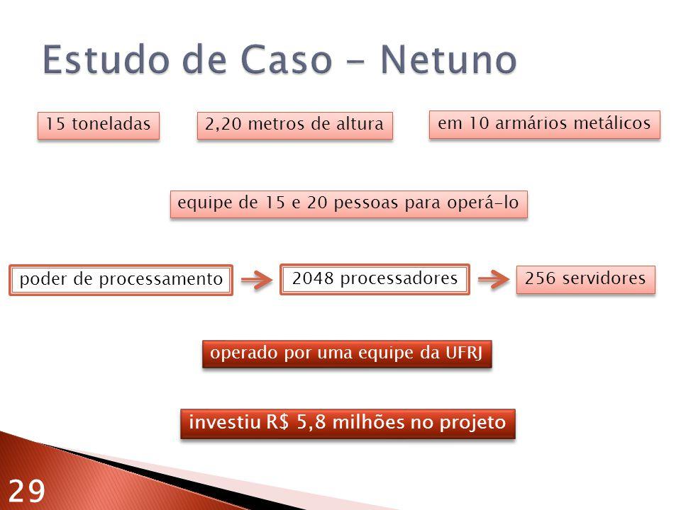 Estudo de Caso - Netuno 29 investiu R$ 5,8 milhões no projeto