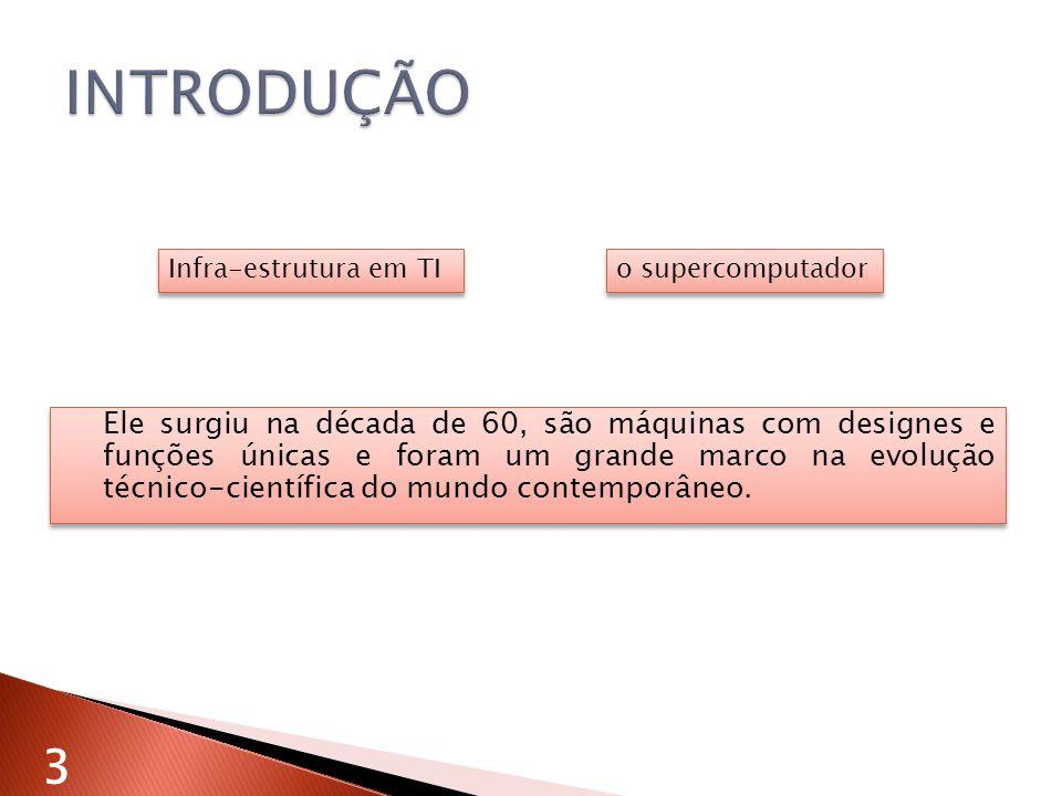 INTRODUÇÃO Infra-estrutura em TI. o supercomputador.