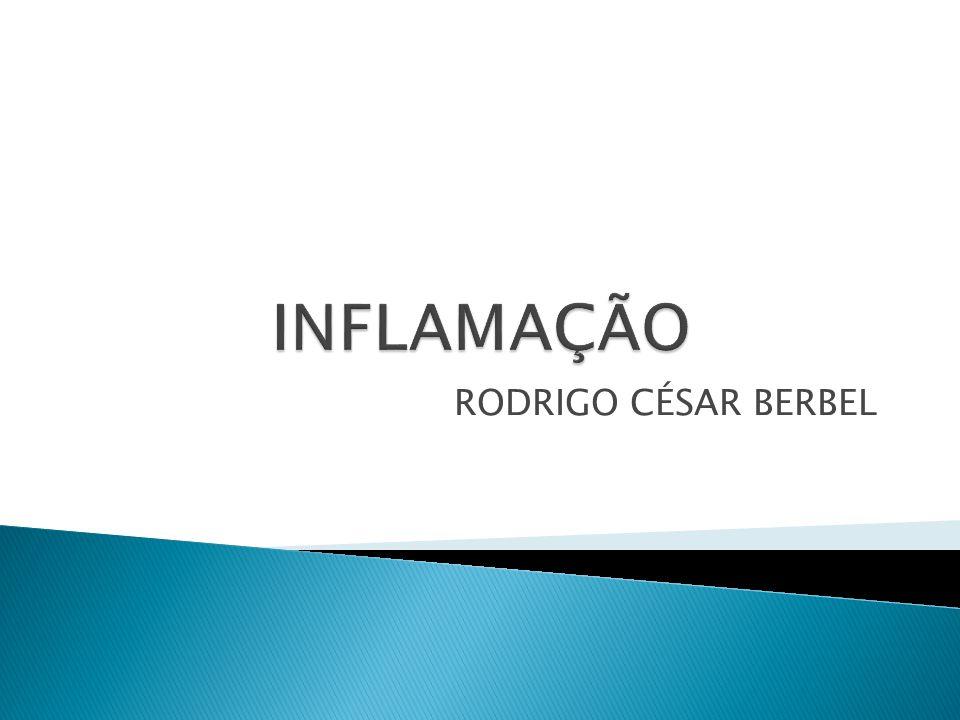 INFLAMAÇÃO RODRIGO CÉSAR BERBEL