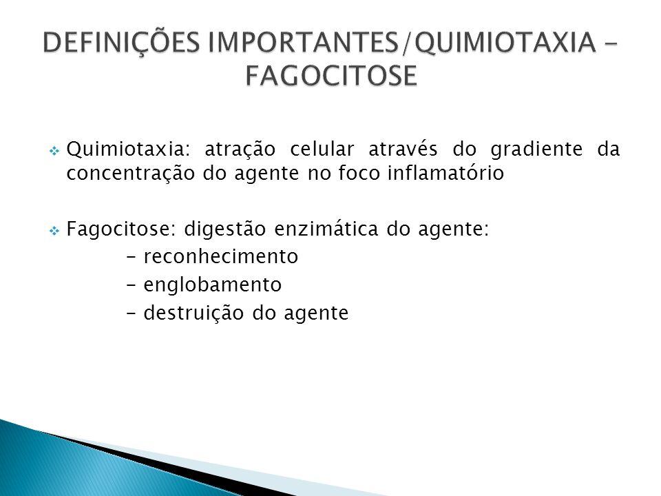 DEFINIÇÕES IMPORTANTES/QUIMIOTAXIA - FAGOCITOSE