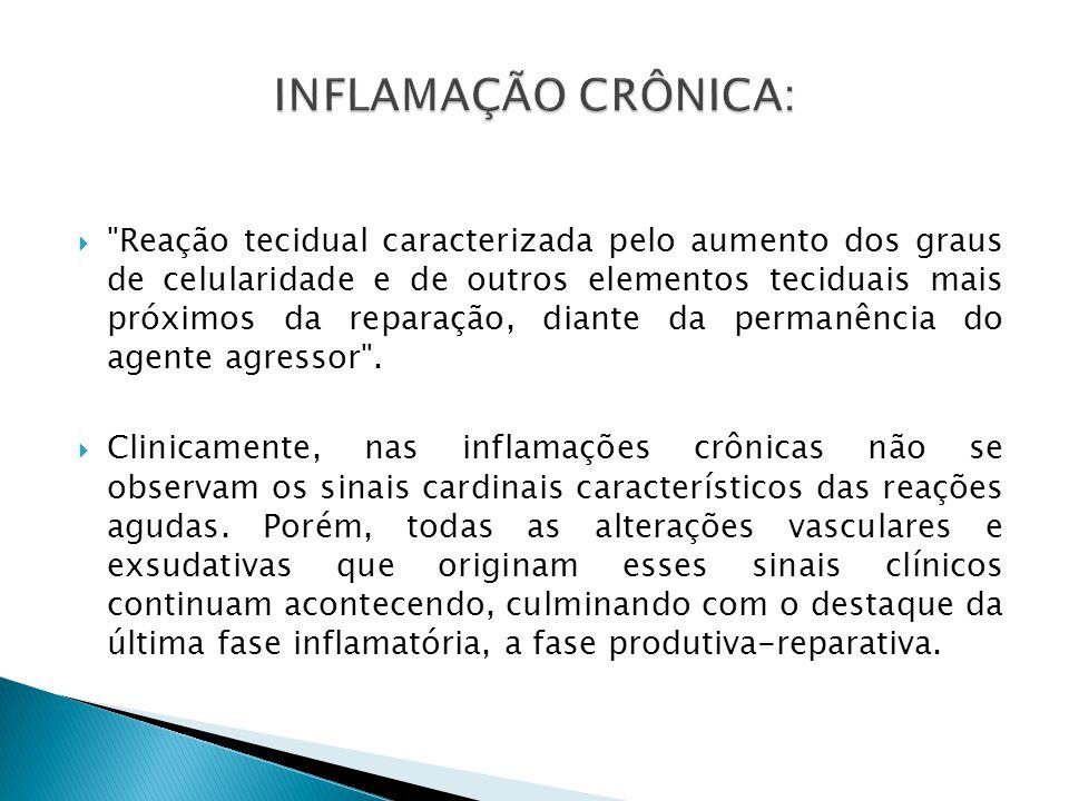 INFLAMAÇÃO CRÔNICA: