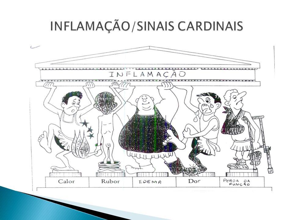 INFLAMAÇÃO/SINAIS CARDINAIS