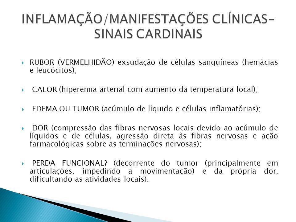 INFLAMAÇÃO/MANIFESTAÇÕES CLÍNICAS-SINAIS CARDINAIS